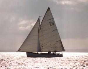 C12 Pearl 1