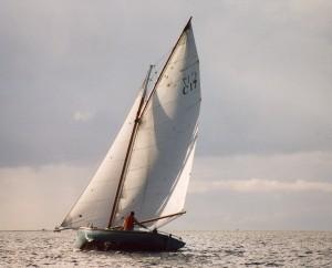 C17 Muriel 2