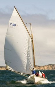 C86 Wagtail 2
